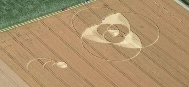 العلماء يفسرون سر الأشكال الهندسية التي تظهر في الحقول