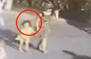 صينية تخطف طفلة في وضح النهار (فيديو)