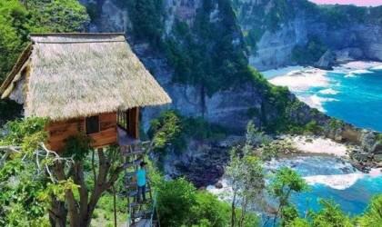 منزل على الشجرة مطلّ على المحيط بـ36 دولاراً لليلة... الحلم إلى بالي أصبح حقيقة!