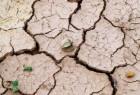 في غضون 30 عاما.. 140 مليون مهاجر بسبب تدهور حالة الأرض