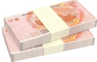 تونس تعتزم إدراج تمويلات عبر السندات الخضراء بدعم من البنك الدولي