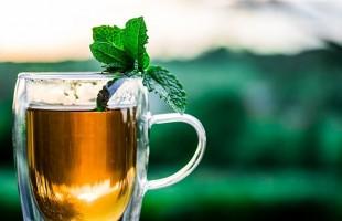 13 فائدة و6 أضرار… أيهما أفضل الشاي الأسود أم القهوة؟