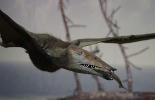 """العثور على بقايا وحش """"عملاق"""" كان يفترس الديناصورات"""