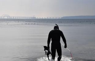 بالفيديو.. غواص يستعين بحيوان بحري لتنظيف أسنانه