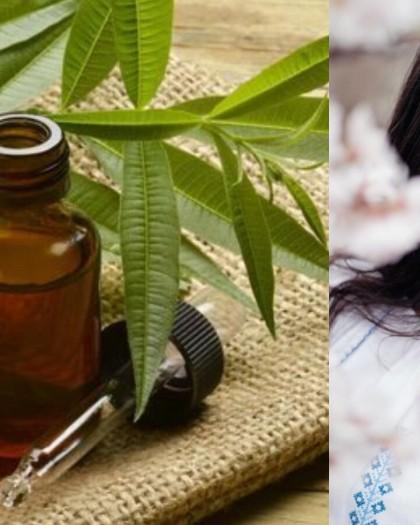اصنعيه بنفسك: زيت شجرة الشاي لعلاج حب الشباب