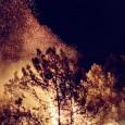 حرائق لبنان تعرّي الدولة... صار بدنا وطن