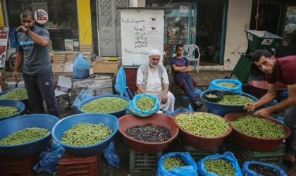 شاهد: سوق الزيتون بغزة.. معلم أثري وحركية تجارية