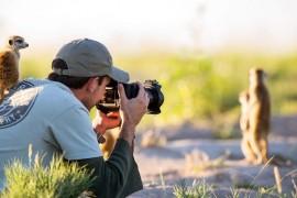 لقطة درامية بين ثعلب وفريسته السنجاب تفوز بأفضل صورة للحياة البرية لعام 2019!
