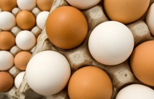 هل يمكن تناول البيض كل يوم